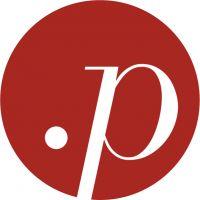 punkt personal AG logo image